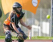 Spring Sports Roundup - Go Tigers!