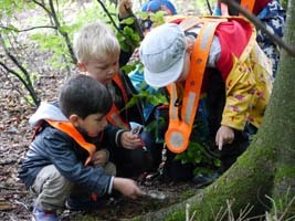 Our Early Years Students Explore the Great Outdoors