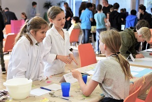 Making Sense of our 5 Senses – the Grade 6 Brain Fair