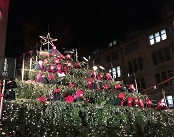 Spreading Holiday Cheer at Zurich's Singing Christmas Tree