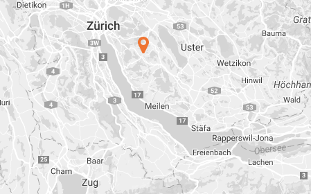 location map of  inter-community school zurich, international school